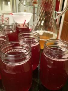 fermenting 051
